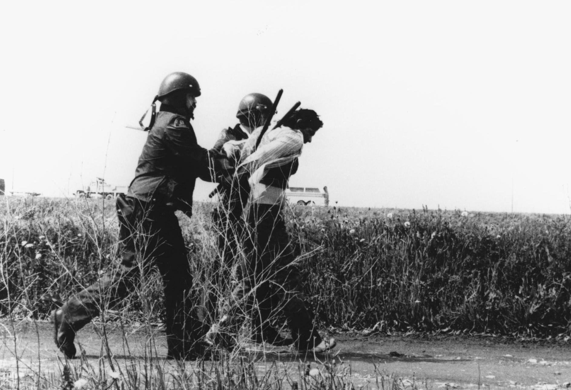 Film: Incident at Restigouche